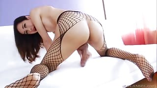 Yummy Trans Babe in Fishnets Playing with her Big Hard Cock
